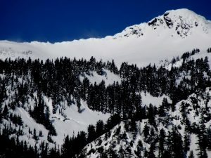 Rock Mountain with a glide crack below treeline, and older deep slab avalanches up higher.