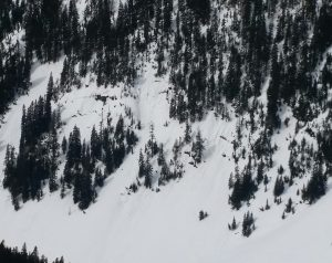 Glide cracks. Martin Peak, SE, 4500ft