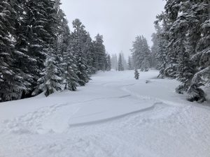 Best ski quality in northerly upper elevation terrain