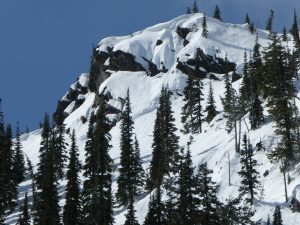 A crown on E, 5,600ft, Henry Creek. This avalanche ran during the avalanche cycles of late February, likely on the mid-January weak layer