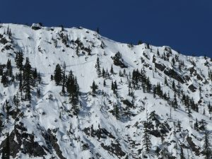 A crown on ESE, 5,550ft, Henry Creek. This avalanche ran during the avalanche cycles of late February, likely on the mid-January weak layer. This avalanche ran 1,600ft to size D3.5