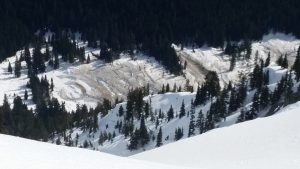Avalanche debris in Whitepine Creek, on the south side of Jim Hill from late February.