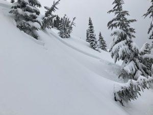 Tye Peak (E, 5100ft) D1 skier triggered.