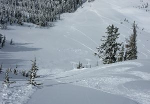 View down towards the natural D2 cornice and slab release, and small loose dry activity from skiing.