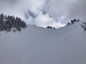 Good skiing on northerly aspects
