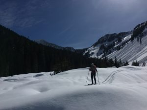 Skinning back from Annette lake on the west side of the creek - lots of recent avalanche debris