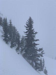 Heavy snowfall in the afternoon near Plumner Peak.