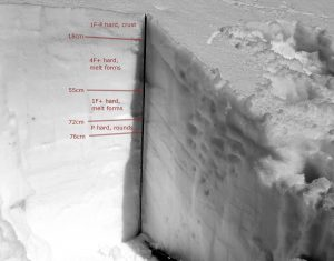 A profile on S, 4550ft. Note the strong over weak layering 18cm below the surface. This corresponds with collapsing and a small triggered avalanche on nearby slopes.