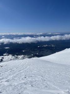 South view, 10 AM on 4/9/21, 6500 ft elevation