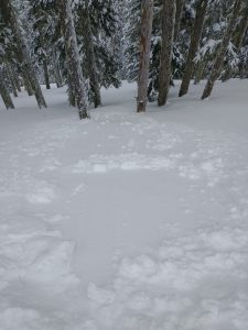 Intentionally skier triggered very small wind slab and dry loose combo on a test slope