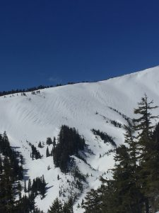 East facing aspect of Heather Canyon with wind scoured snow above treeline and pockets of deposited snow at treeline on the leeside of trees