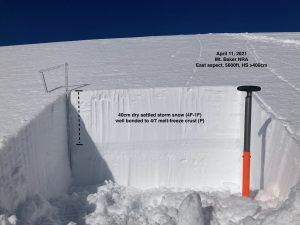 Test pit at the toe of the Easton Glacier