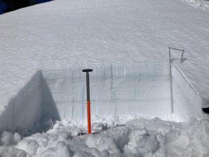 Test pit on a SE aspect at 5400ft with 15cm of 4F hard wet snow at the surface