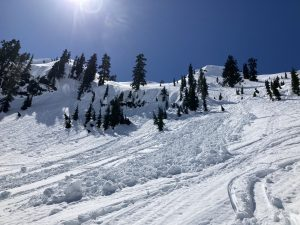 Recent natural wet loose avalanches on a NE aspect at 4800ft above Pocket Lake
