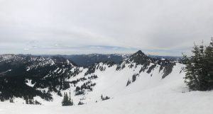 Looking towards three way, older avalanche evidence visible in many areas